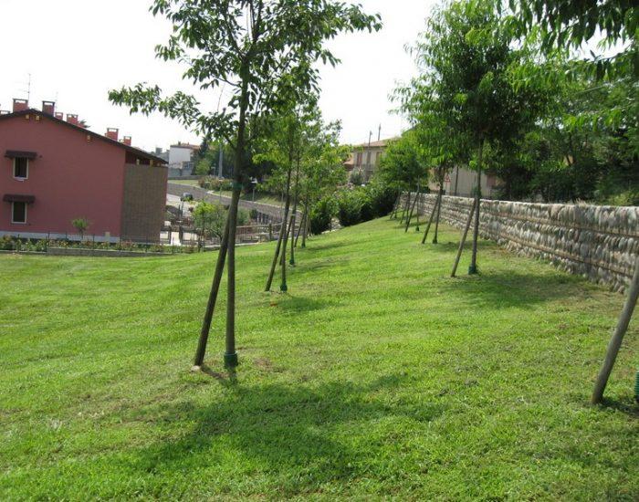 Custoza-Area-Verde-CIES