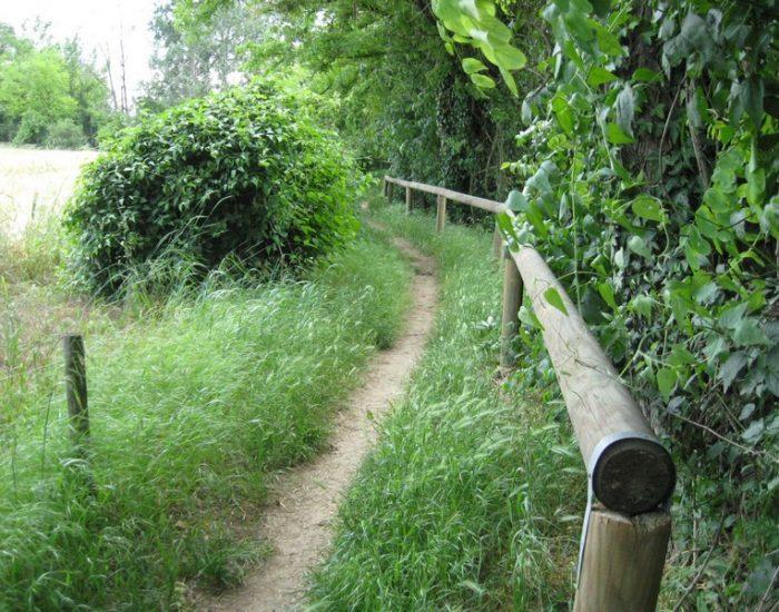 Custoza-Sentiero-Natura-2