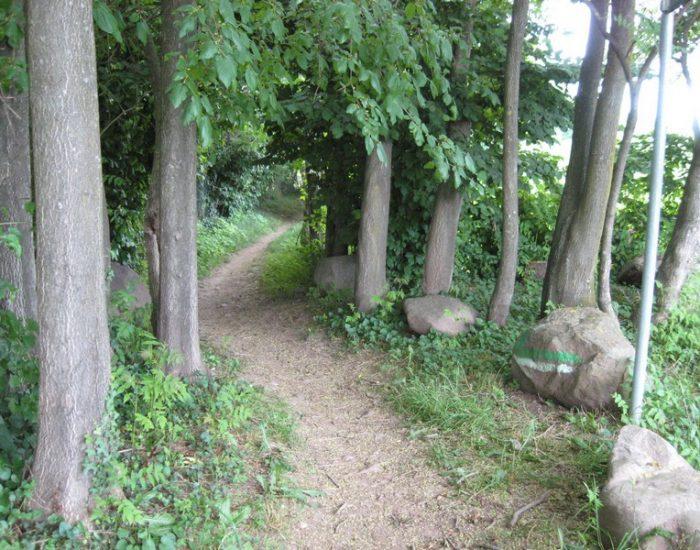 Custoza-Sentiero-Natura