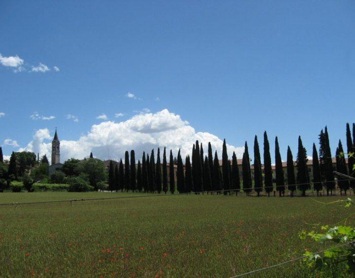 San-Giorgio-in-Salici-Cimitero-2