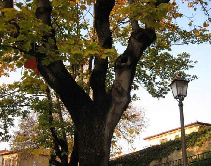 Sommacampagna-Piazza-Castello-2