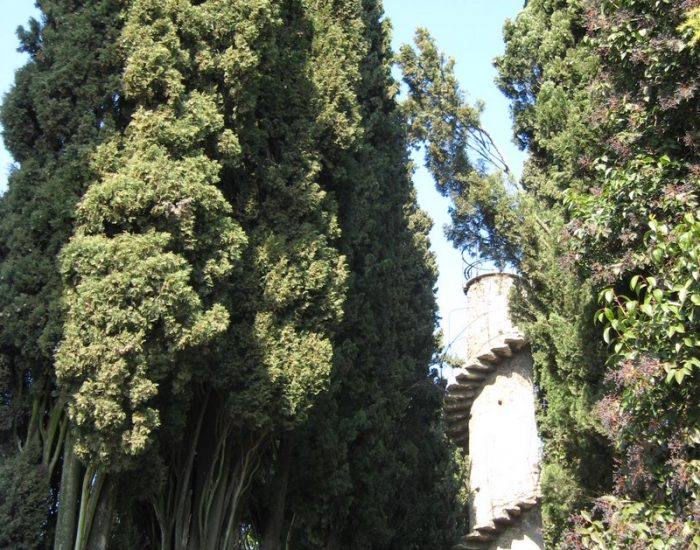 Sona-Parco-Villa-Trevisani-2